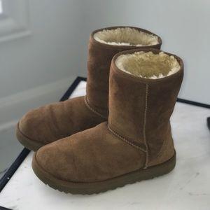Short Classic Ugg Chestnut Boots